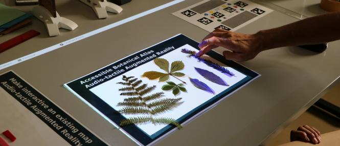An audio tactile botanical atlas developed for VISTE is being presented to the teachers during a hands-on workshop with the VISTE augmented reality tool for inclusive classrooms.
